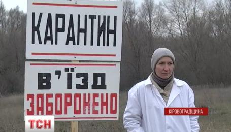 Спалах африканської чуми свиней на Кіровоградщині локалізували