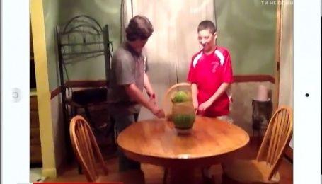 Подборка смешного видео из интернета