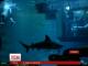 Провести ніч із акулами запропонував сміливцям паризький акваріум