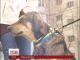 Собака на ім'я Малюк шукає новий дім та люблячих господарів