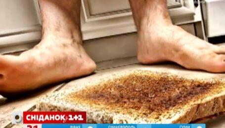 Британські вчені довели: їжа, яка впала на підлогу, може бути дуже небезпечною
