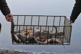 В Украине начал действовать запрет на вылов рыбы