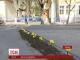 У Чернівцях місцеві студенти висадили квіти просто у вибоїни на дорозі