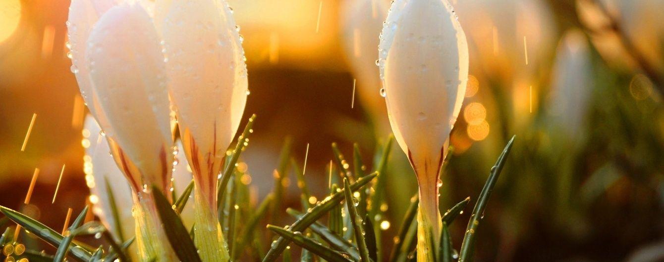 Синоптики прогнозують теплу і місцями дощову неділю