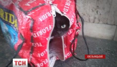 Неабиякий переполох стався на одному з автовокзалів Хмельницького