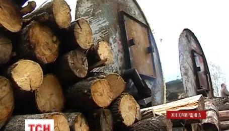 Вугільна лихоманка на Житомирщині