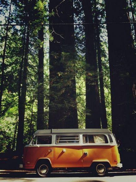 VW Camper_11