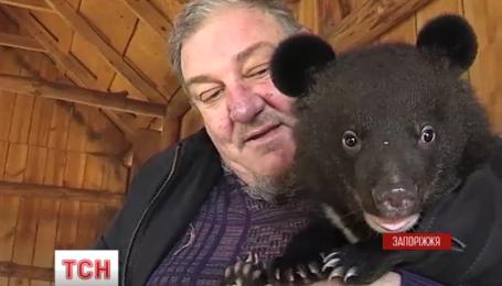 """В Бердянске появились несколько маленьких жителей зоопарка """"Сафари"""""""