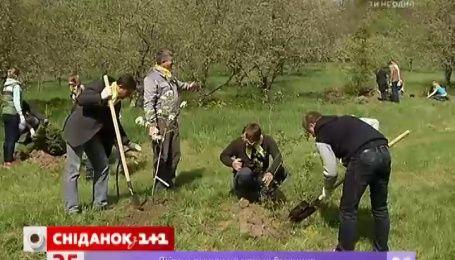 """""""Сніданок"""" высадил сад в виде карты Украины"""