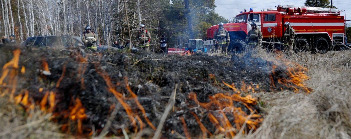 У Росії горіло 700 гектарів лісу