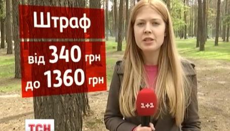 Киевлян будут штрафовать за костры в черте города