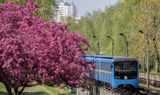 Київ після дощу потрапив до топ-15 міст із найчистішим повітрям