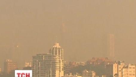 Жителі Сіднея страждають від димової завіси