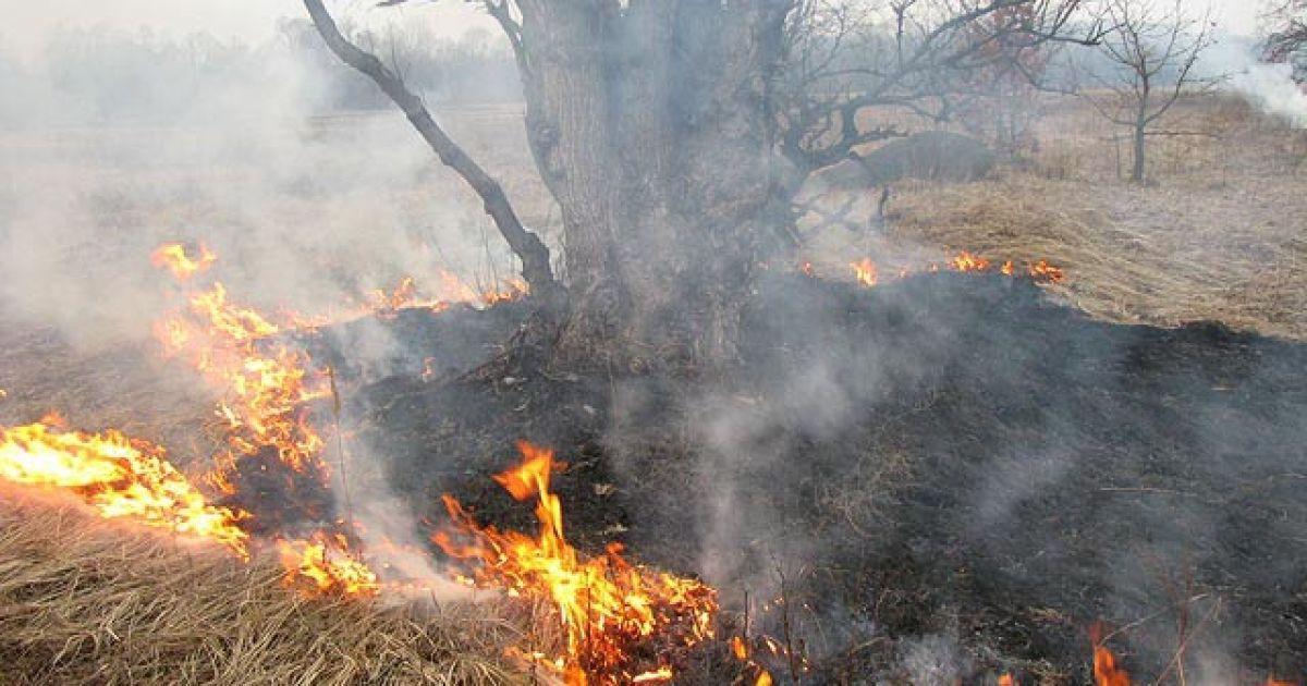 РФ охватили пожары @ Иркутская область официальный портал