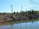 Екології району завдали серйозних збитків