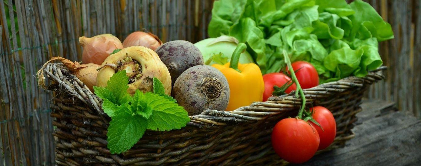 Огірки, томати та капуста: в Україні суттєво здешевшали овочі