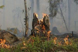 В Забайкалье и Бурятии значительно выросла площадь лесных пожаров