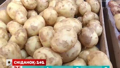 Полезнее ли молодой картофель чем старый
