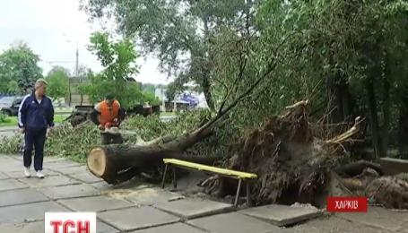 У Харкові прибирають наслідки зливи