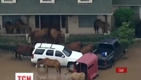 В Техасе полностью эвакуировали город Симонтон из-за наводнения