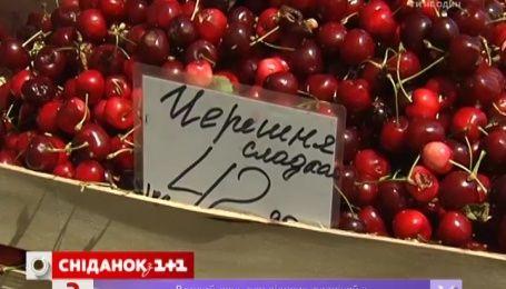 Черешню в Киеве продают по 50 гривен за килограмм, в Херсонской области по 12