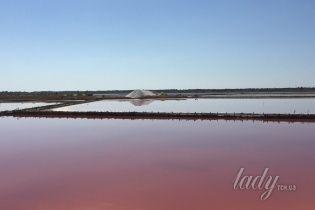 Природные чудеса Украины: розовые озера Херсонщины