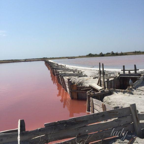 розовые озера, Херсонщина_5