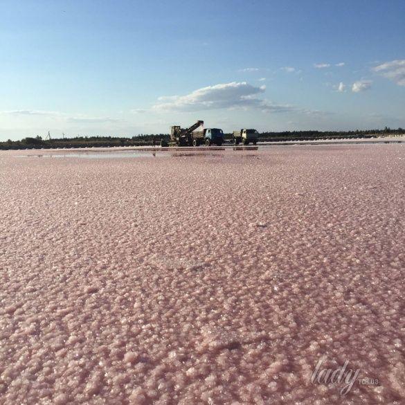 розовые озера, Херсонщина_7