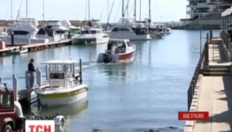 Новий напад акули на західному узбережжі Австралії