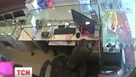 В Индии ювелирный магазин обокрала обезьяна