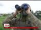 Бойовики активно використовують міномети та самохідну артилерію
