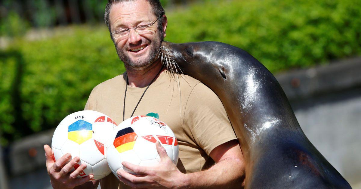 Морський котик дав прогноз на матч Німеччина - Україна.
