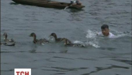 Як в Китаї під час фестивалю човнів-драконів качок ловили