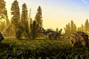 Ученые считают, что динозавры ворковали, как голуби