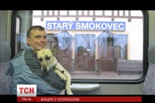 """Уникальная собака-путешественница """"покорила"""" уже пол-Европы"""
