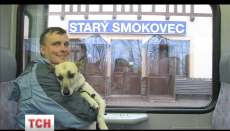 Во Львове бездомная собака стала путешественником