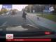 Невдячна гуска із Канади стала зіркою Інтернету