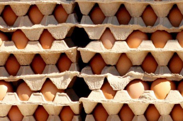 В Україні подешевшали яйця: які ціни у регіонах