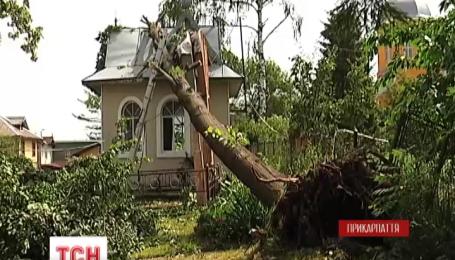 На Закарпатье в больницу попали семь человек, пострадавших от града