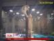 У тайванському зоомагазині котеня подолало скляну стіну заради товариша
