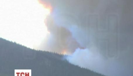 Пожежні Колорадо не встигають гасити ліс через швидкість поширення вогню