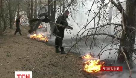 На Черниговщине не могут потушить лесной пожар вблизи военного полигона в Гончаровском