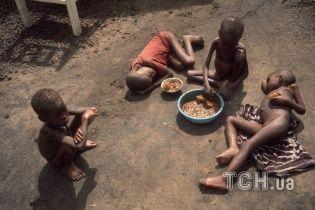В Нигерии из-за вспышки желтой лихорадки умерли 16 человек