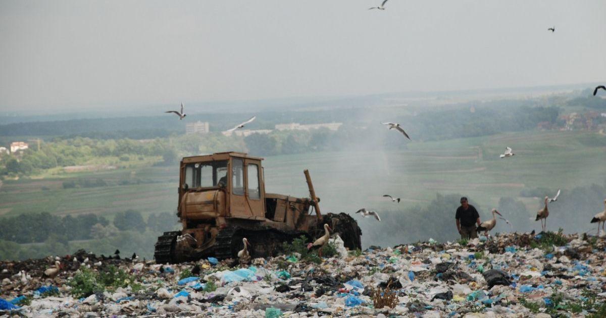 Суд признал умершим эколога, который пропал во время пожара на Грибовичской свалке