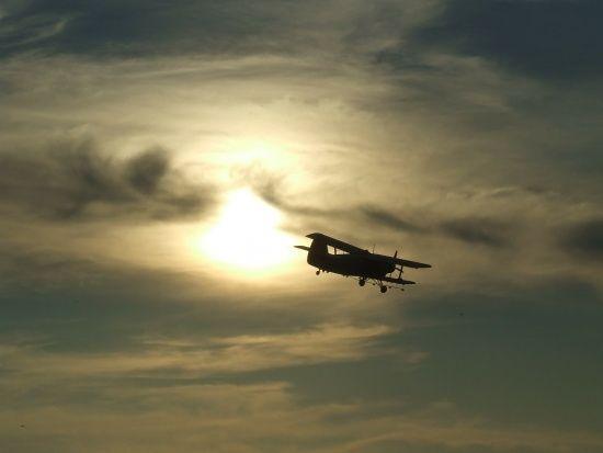 У Росії літак здійснив екстрену посадку в лісі через обмерзання