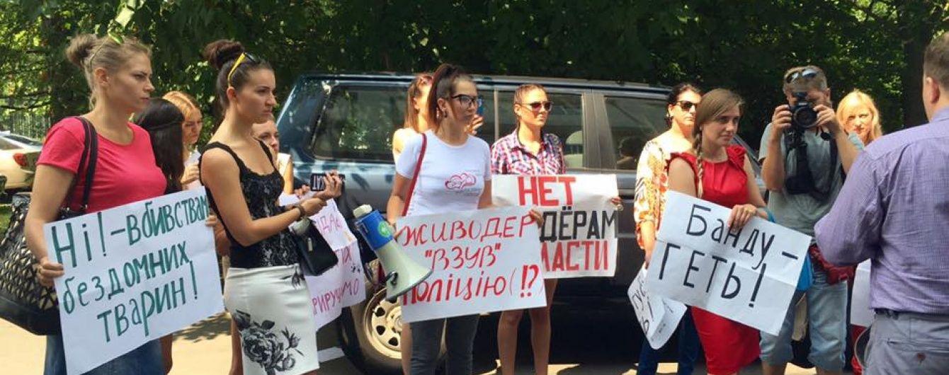 Українській захисниці тварин погрожують через розголос історій про масові отруєння собак