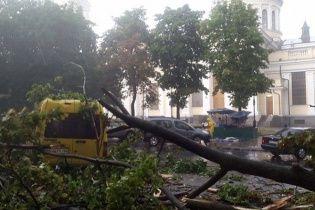 У Затоці на майданчику фестивалю важкою технікою розгрібають наслідки буревію