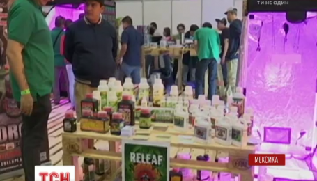 В Мексике организовали первую выставку марихуаны
