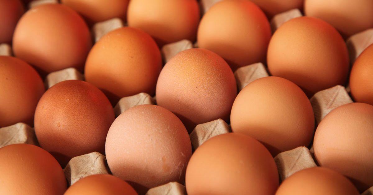Від початку року в Україні скоротилося виробництво яєць: які причини