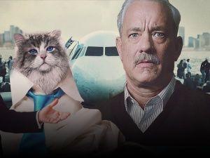 Топ-10 головних фільмів першої половини вересня